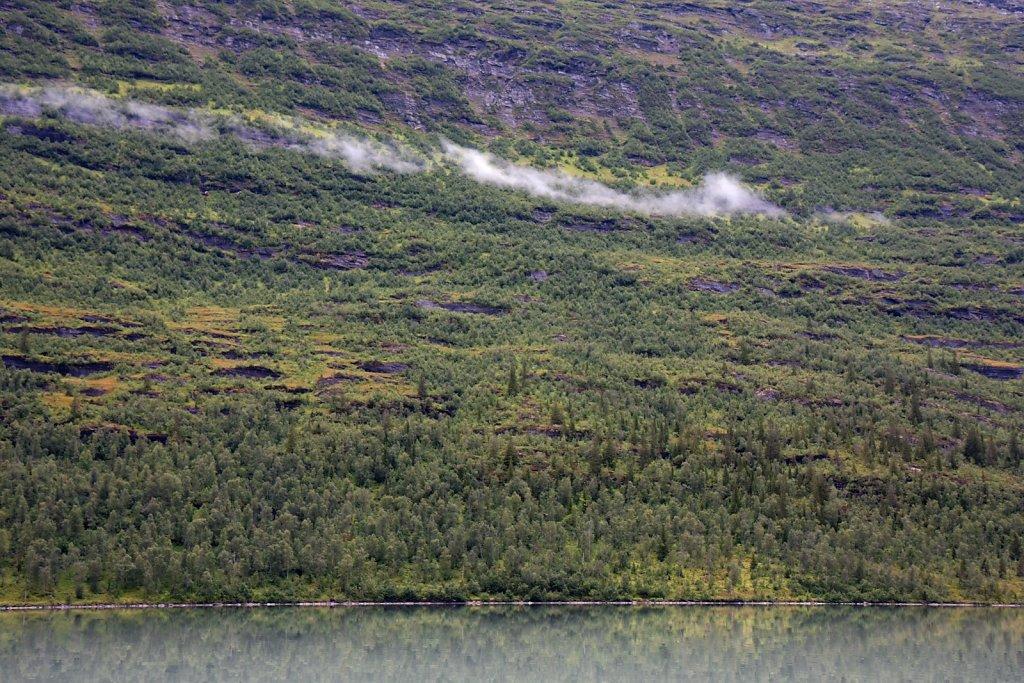 Nahe des Svartisen Gletscher