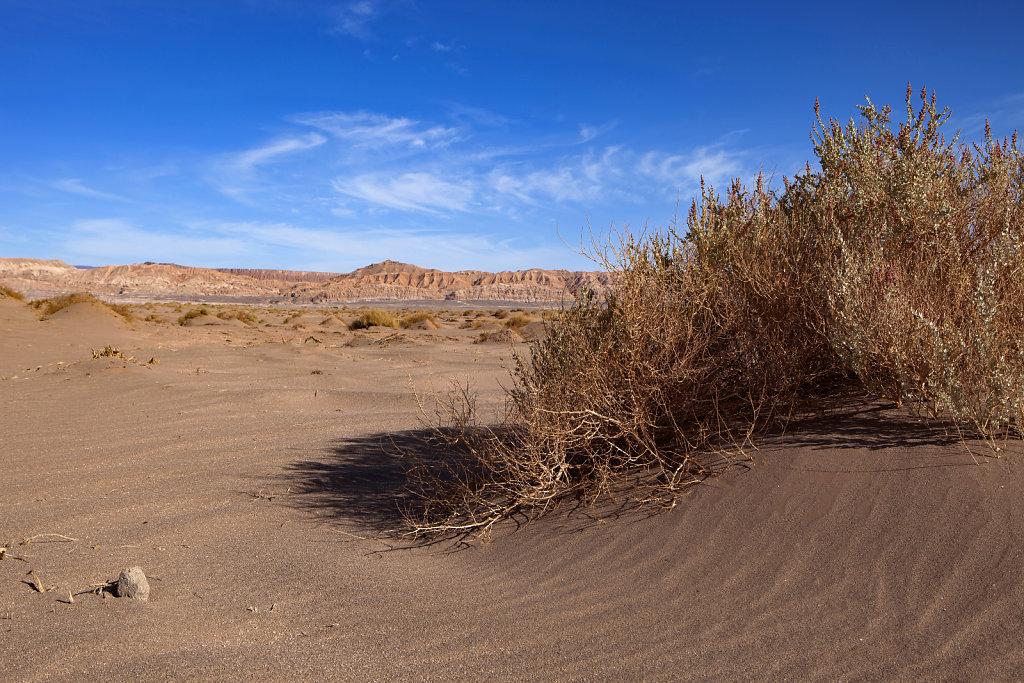 Chile | Bolivien