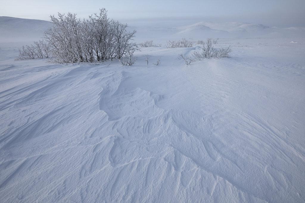 Schneemuster