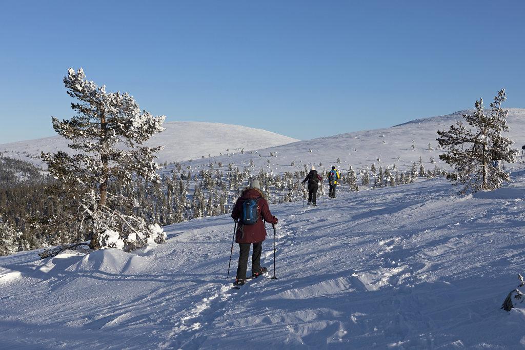 Schneeschuh-Wanderung aufs Fjell - Finnland